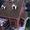 Битумная черепица Чаплинка, Ивеко-груп