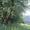 Зем.ділянки, тамже дім на Закарпатті, Чудові краєвиди,  #921771
