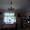 3-кім. будинок,всі с/г постройки,зем.ділянка.Чиста вода,повітря, приро - Изображение #7, Объявление #921766