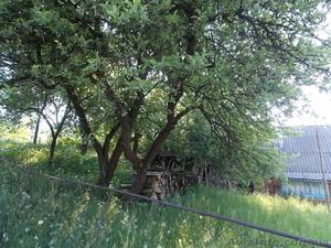Зем.ділянки,тамже дім на Закарпатті,Чудові краєвиди, - Изображение #2, Объявление #921771