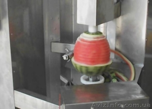 Машина для очистки от кожуры ананаса, дыни, арбузов, тыквы - Изображение #2, Объявление #1636050