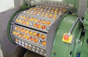 Машина для удаления косточек из вишни, сливы, абрикоса 1000 – 2000 кг/час - Изображение #3, Объявление #1648767