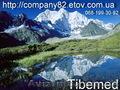 Продукция Компании Тибемед