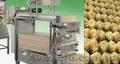 Линия для производства макарон гнезд,  машина для производства гнезд,  тальятелле