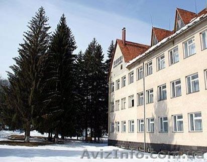 Продам земельну ділянку в центі Шаян Хустського району Закарпатської області, Объявление #1232559
